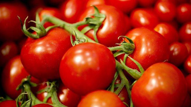 624354-fresh-tomatoes