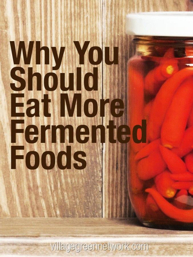 fermented_foods_V