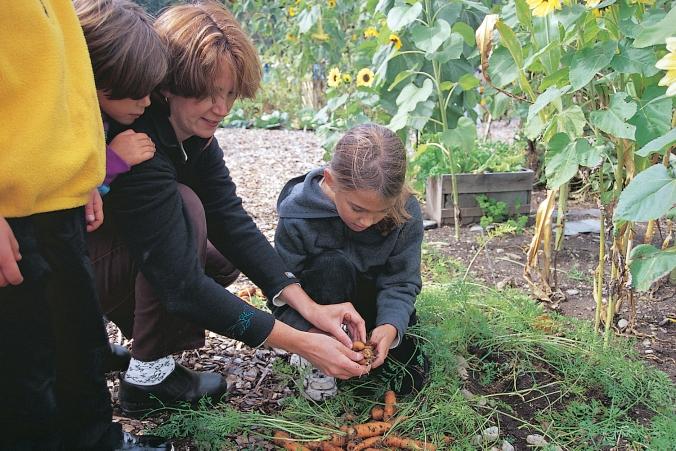 school-garden-lg
