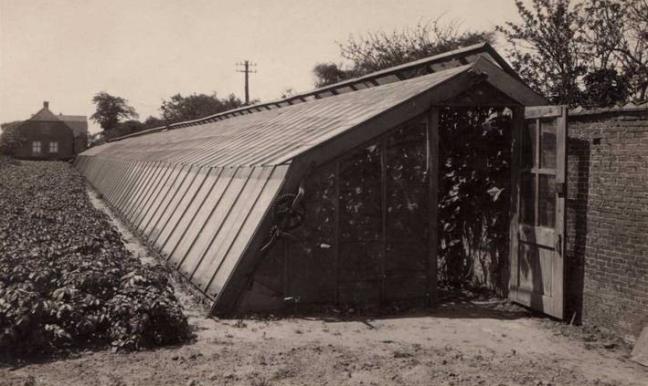 Dutch greenhouse 1930s
