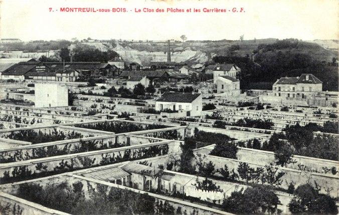 Montreuil fruit walls