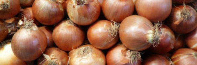 cropped-pickled_onions.jpg