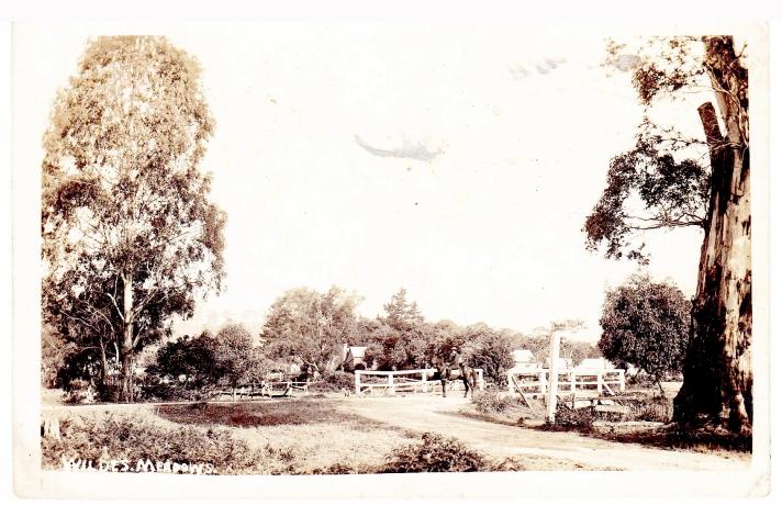 Wildes Meadow bridge 1